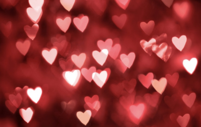 Things+to+do+on+Valentines+Day+%28If+You%27re+Single%29